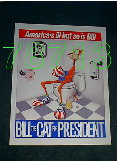 America's ill, but so is Bill.  Bill the Cat for President.